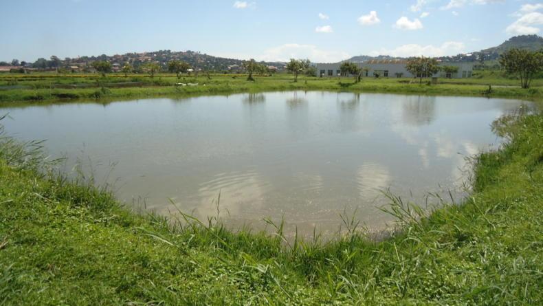Mdc invites franklin county landowners to pond workshop for Koi pond zoning