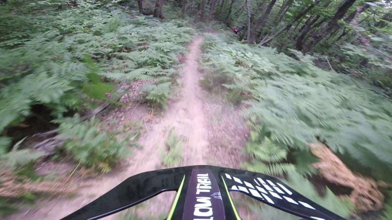 AK Trail - Dirfi