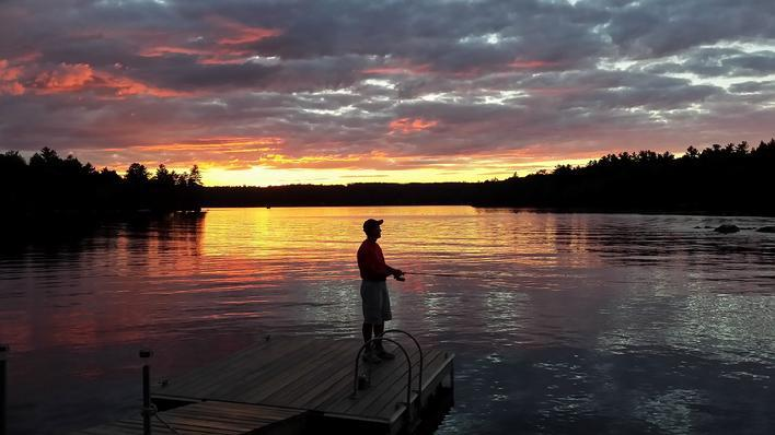 Invasive Milfoil Confirmed In Cobbosseecontee Lake