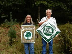 Michigan Forest Stewardship Program Hits 1 Million Enrolled Acres