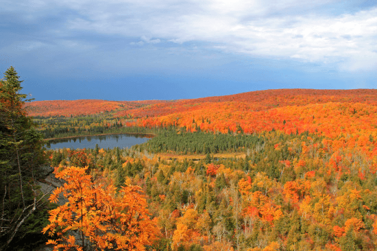 Minnesota's State Forests Offer Beautifully Scenic Drives